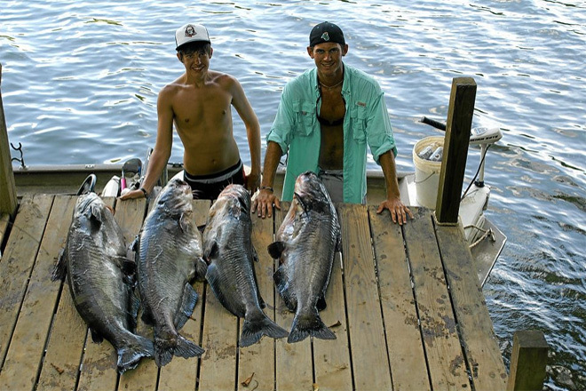 fishingbuchananshoals3